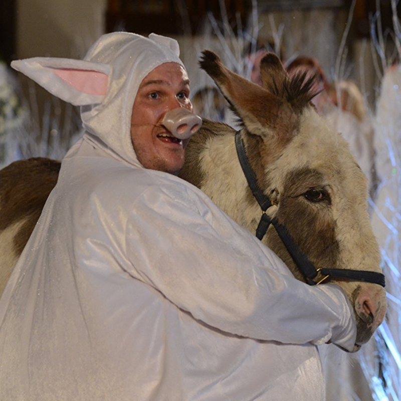 Marc Wootton stars in Nativity 3: Dude, Where's My Donkey?!