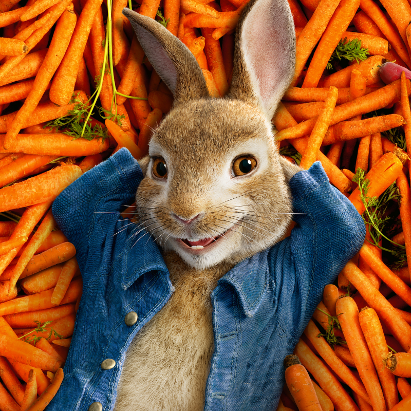 Peter Rabbit released in UK cinemas!
