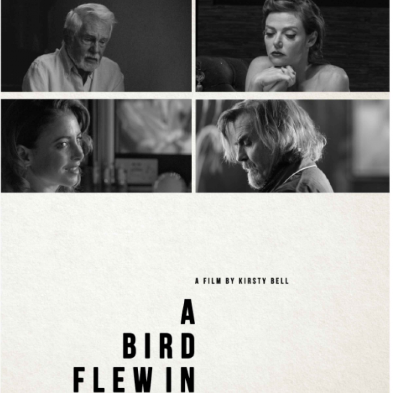 'A Bird Flew In' starring Julie Dray has been nominated as the best UK Feature Film 2021 by the 'Raindance Film Festival'.